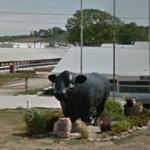 Big Bull Statue