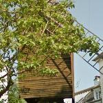 Moulin de la Galette (StreetView)