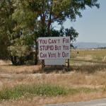 You Can't Fix Stupid But You Can Vote It Out (StreetView)