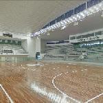Arena Santos (indoor) (StreetView)