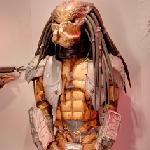 Predator (StreetView)