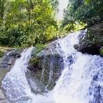 Belize jungle waterfall