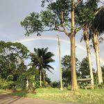 Rainbow at Doka Estate, Costa Rica