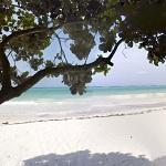 Zanzibar beach (StreetView)