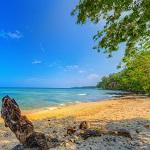 Filtered Solomon Island beach