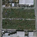 Urban Community Garden (Google Maps)