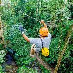 Ziplining at Flight of the Gibbon (StreetView)