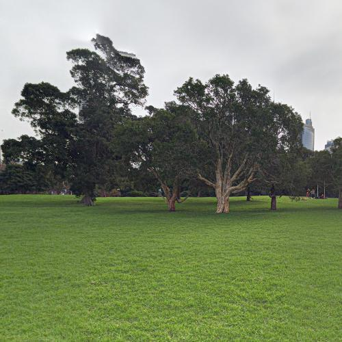 Royal Botanic Gardens, Sydney (StreetView)