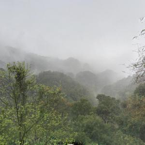 Mount Danxia (StreetView)