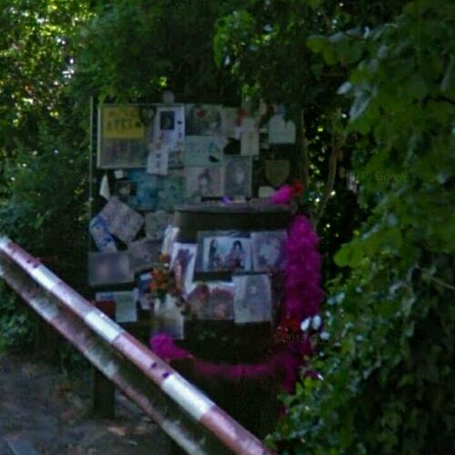 Marc Bolan Memorial In Crash Site 9 16 1977 In