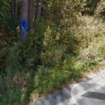 Maura Murray's car crash/disappearance site (2004)