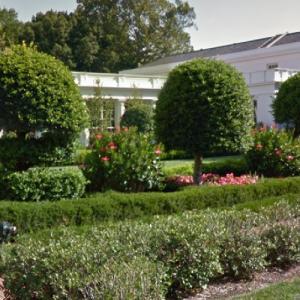 Jacqueline Kennedy Garden - White House (StreetView)