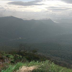 View from Adam's Peak (StreetView)