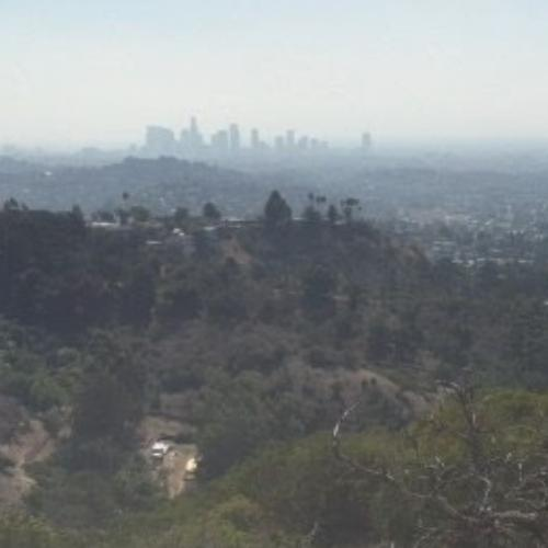 Griffith Park and the L.A. Skyline (StreetView)