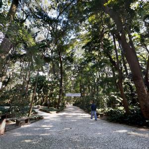 Parque Trianon (StreetView)