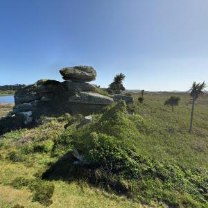 Tresco Abbey Gardens (StreetView)