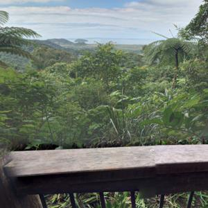 Daintree River National Park (StreetView)