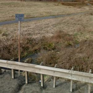 Source of the Allegheny River (StreetView)