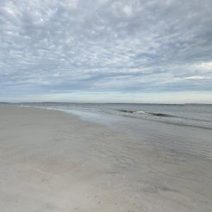 Mouth of the Savannah River (StreetView)
