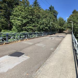 20th Avenue NE Bridge (StreetView)