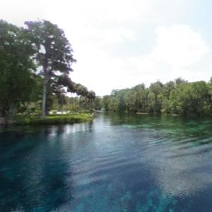 Silver Springs State Park (StreetView)