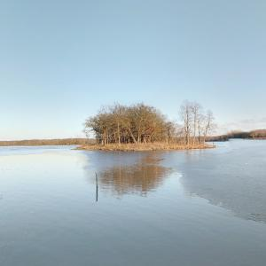 Ned Brown Forest Preserve (StreetView)
