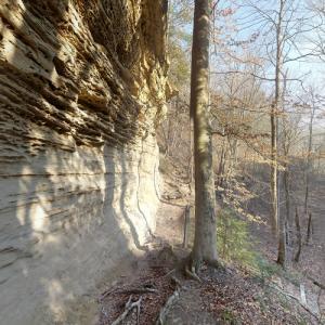 Pine Hills Nature Preserve (StreetView)