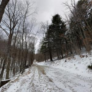 Susquehannock State Forest (StreetView)