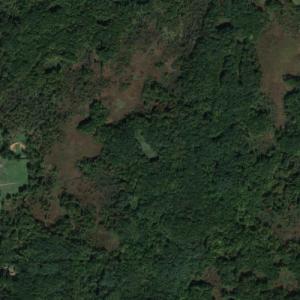 Black Spruce Bog Natural Area (Google Maps)