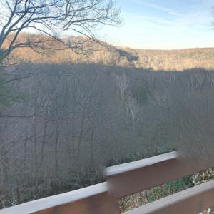 Tinker's Creek Gorge (StreetView)