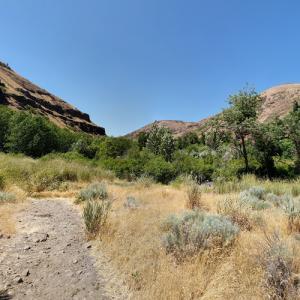 Umtanum Ridge Water Gap (StreetView)