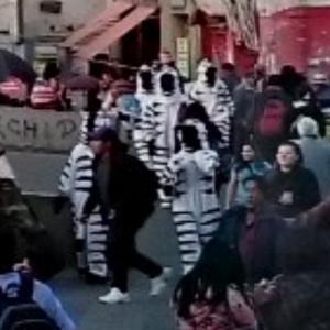 La Paz traffic zebras (StreetView)