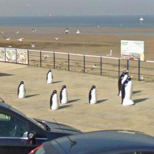 The Redcar Penguins (StreetView)