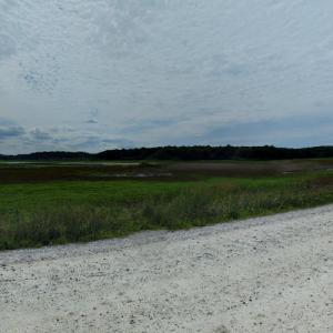 Bombay Hook National Wildlife Refuge (StreetView)
