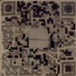 Giant QR Code made of trees