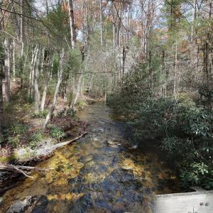 Michaux State Forest (StreetView)