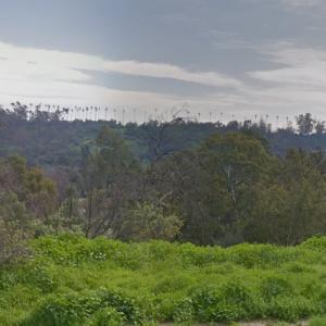 Elysian Park (StreetView)
