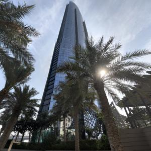 D1 Tower (StreetView)