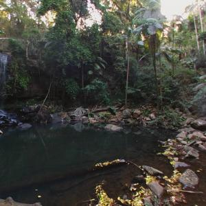 Tamborine National Park (StreetView)