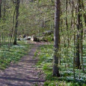 Truelstrup Runddysse (Dolmen) (StreetView)