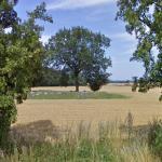 Landbogård Langdysse (Long Barrow)