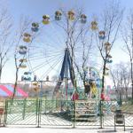 Shcherbakov Park Survey Wheel