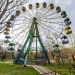 Municipal Park Survey Wheel