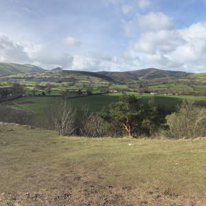 Loggerheads Country Park (StreetView)