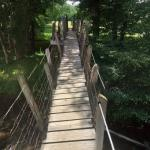 Mt Zion Swinging Bridge