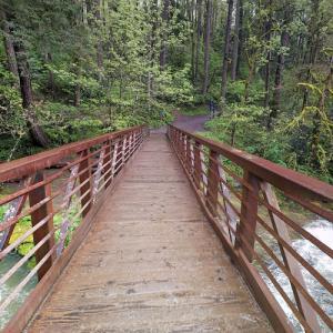 McEnry Bridge (StreetView)