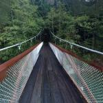 Trail of the Cedars Suspension Bridge