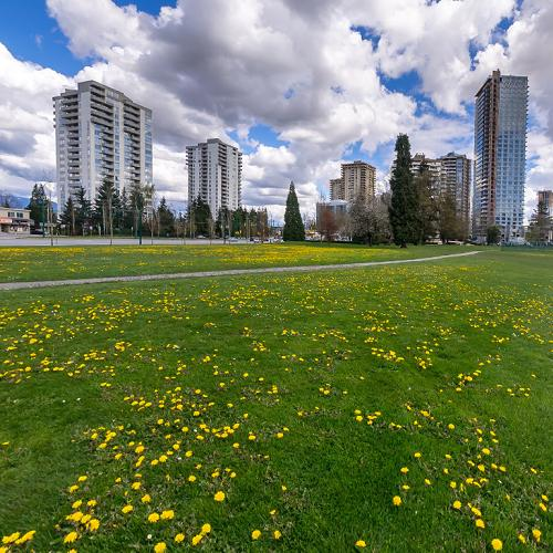 Burnaby Central Park in Burnaby, Canada (Google Maps) on