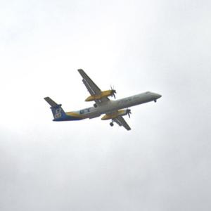 "Alaska/Horizon Air Q400 ""Alaska Nanooks"" [N44IQX] (StreetView)"