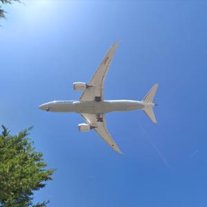 All Nippon Airways Boeing 787-8 [JA813A] (StreetView)